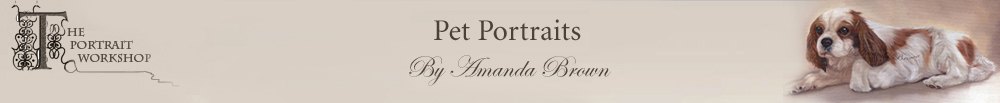 Pet Portraits by Amanda Brown